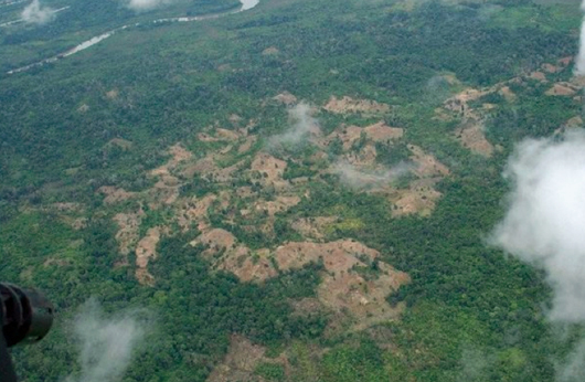 Big chunks of destroyed rainforest can be seen where cocaine is being grown