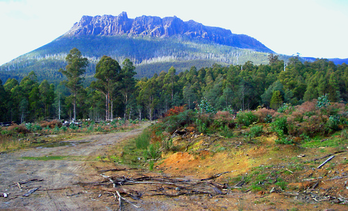 tasmania-REDD-mountains