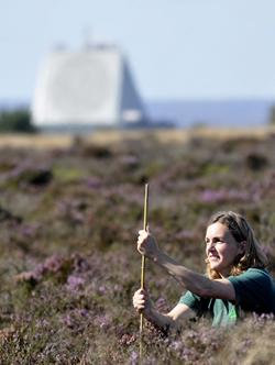 picture of scientist surveying moorland