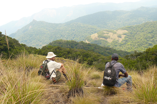 two men on mountain looking at view over forests and hills