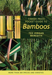 Coler of Pocket Guide to bamboos book