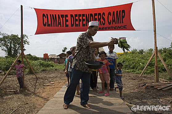 greenpeace campaigners in indonesia